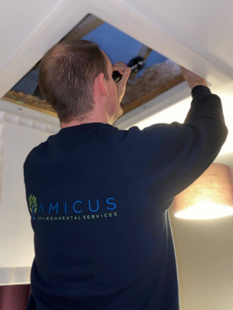 An Amicus Technician Looking for Pests